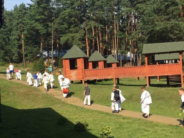 Спортивные лагеря